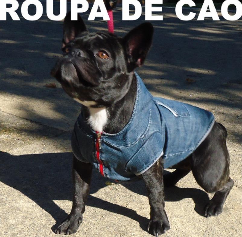 roupa_de_cao